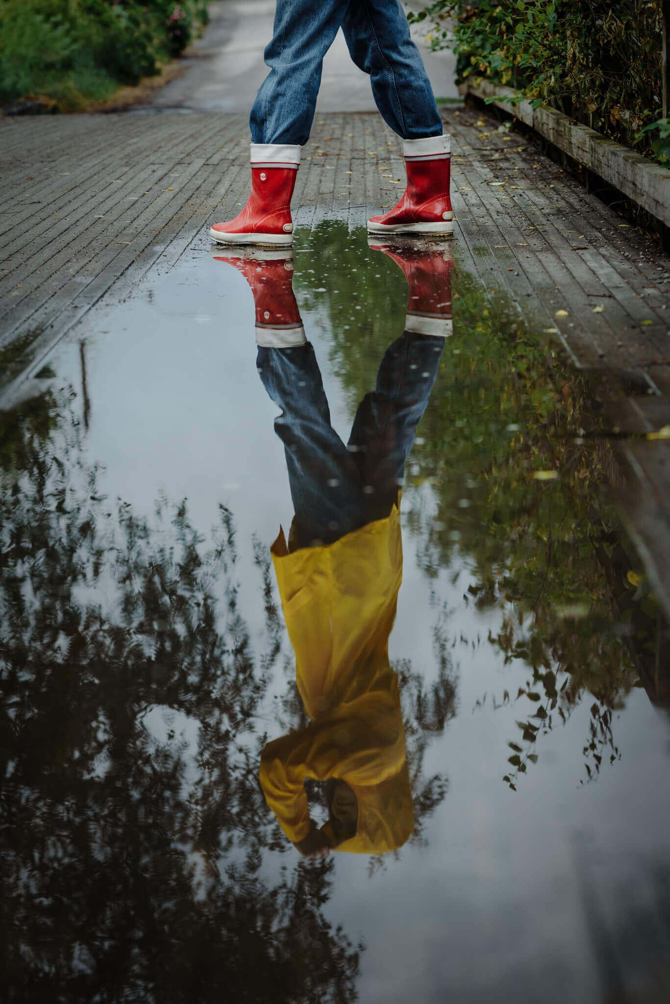 violan heijastus vesilätäkössä