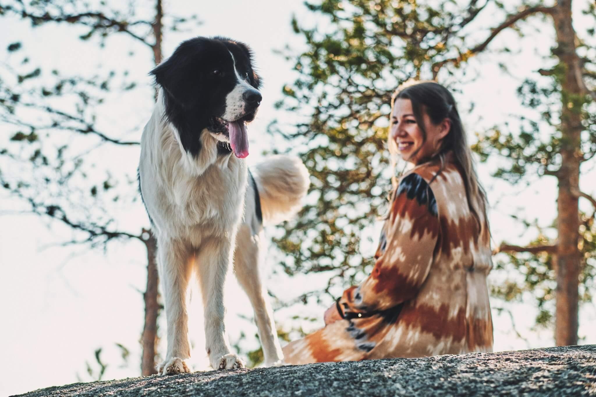 koirakuvaus koira jyväskylä_02-06-21
